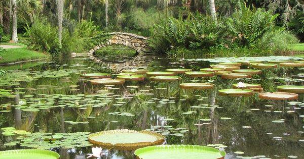 Mckee Botanical Gardens Vero Beach Fl Places I 39 Ve Been Pinterest Vero Beach Fl Vero