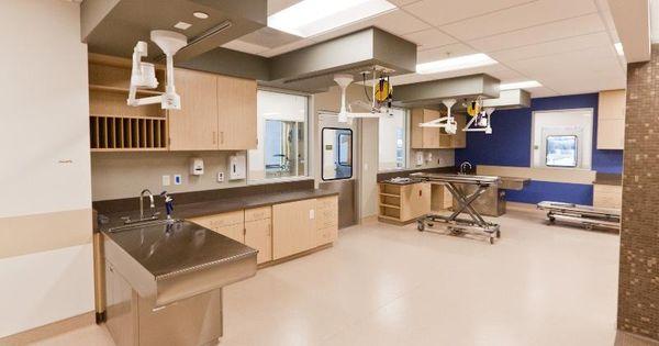 Induction Room For Vca West La By Animal Arts Design Studios Veterinary Pinterest Design