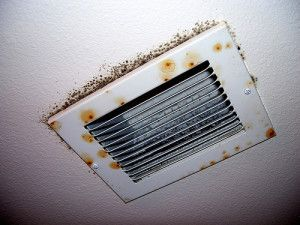How To Remove Black Mold In Air Ducts And Vents Cleaning Air