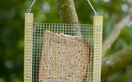 bread bird feeder-- so simple!