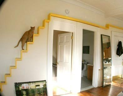 Cat Room Ideas Every Crazy Cat Lady Wants To Get Her Hands On Cool Cat Tree Plans Cat Stairs Cat Room Cat Playground
