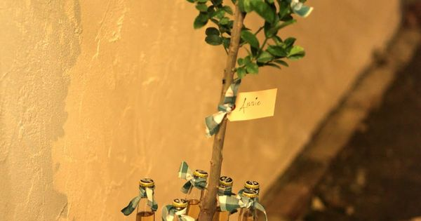 Such a cute idea! Lime tree and coronas. What a great house