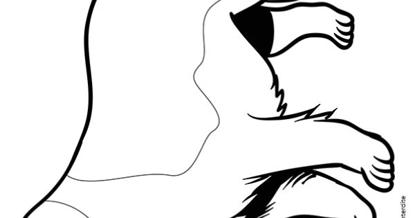 Coloriage d 39 un dessin d 39 un chien secouriste des montagnes - Dessin d un chien ...