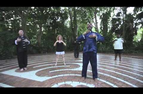 Qigong, Medical and Lungs on Pinterest