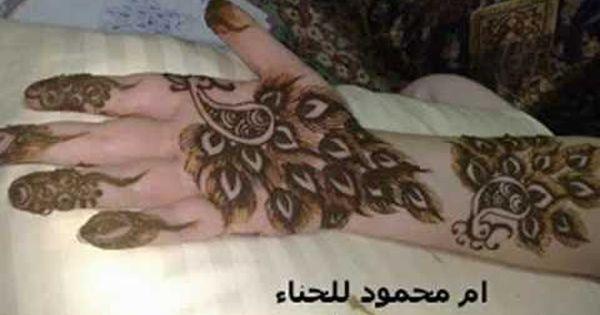 صور نقش حناء الطاووس و نقوش رائعة Henna Beautiful Mehndi Design Henna Designs