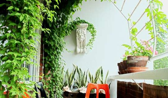 Dejo!! // Balcony garden -- like the arch! great idea for being