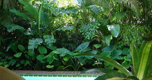 Florida landscaping landscaping is a southeast florida for Piscina jardin secreto