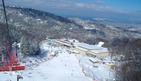 Ober gatlinburg ski resort gatlinburg tn favorite for Cabins near ober ski resort gatlinburg tn