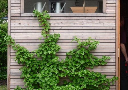 gartenhaus modern f r r der und m ll geeignet hofeinfahrt pinterest gardens terraced. Black Bedroom Furniture Sets. Home Design Ideas