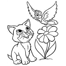 Cat Coloring Pages | Cat coloring book, Animal coloring pages, Cat ... | 230x230