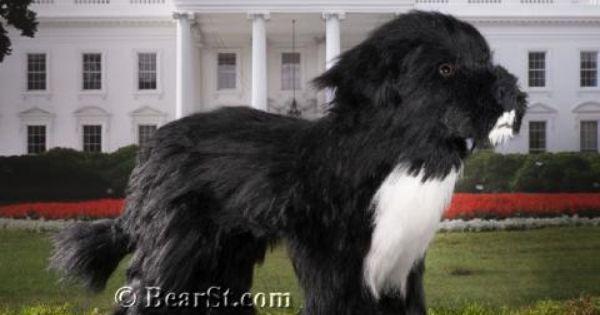 President Obama S Dog Bo Portuguese Water Dog Stuffed Toy