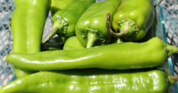 Preserving Hot Peppers | Pepper