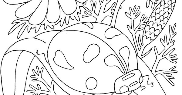insects coloring pages pdf  BUGS Embroidery Applique  Pinterest