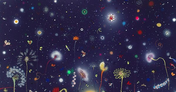 Thierry Feuz True Technicolour Beauty | inspiration - I want on my