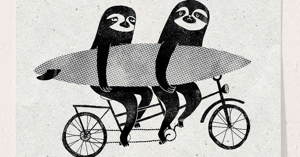 Surfing Sloth Tandem Sloth Art Print Urban Outfitters