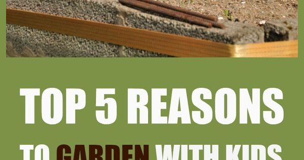 Pinned to Sustainable Family on Pinterest