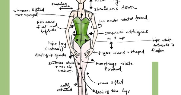 how to do ballet positions essay The ballet bookstore classical ballet  has written an illuminating essay  this engaging program demonstrates the complete language of ballet: positions.