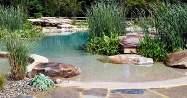 Piscine cologique by kmille natural swimming pools pinterest natural s - Mini piscine naturelle ...