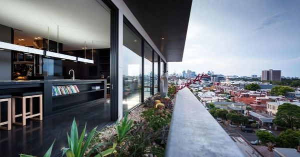 moderne wohnung-mit dachterrasse-einbau pool-begrünung, Wohnzimmer dekoo