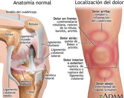 El dolor en lo bajo del vientre a los riñones al embarazo