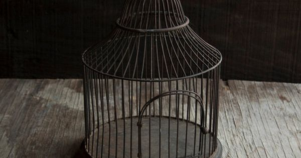 antique bird cage past in the present pinterest antique bird cages bird cages and bird. Black Bedroom Furniture Sets. Home Design Ideas