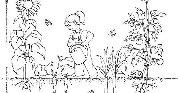 download als pdf: natur – garten gartenarbeit gemüse | bilder, Garten ideen