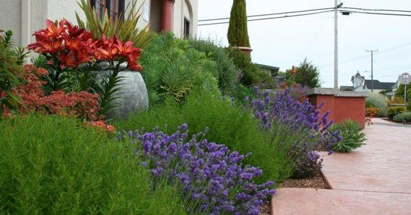 Am Nagement De Jardin M Diterran En Plantes Et Fleurs Jardins Jardin M Diterran En Et