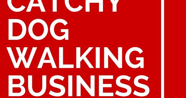 47 Catchy Dog Walking Business Names Dog Walking