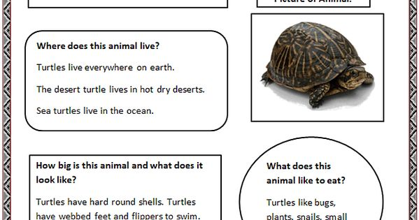 animal research paper graphic organizer Animal research graphic organizer elementary list of ebooks and manuels about animal research graphic organizer elementary.