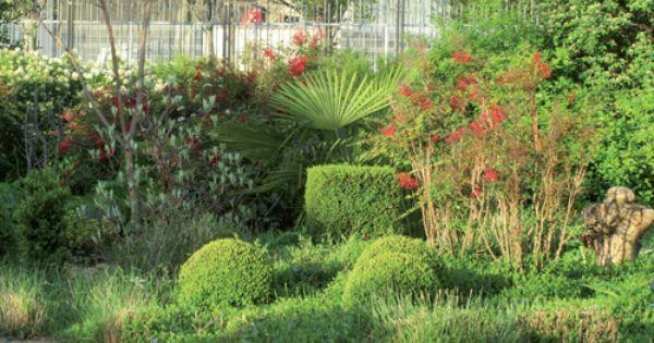 Des Idees De Plantes Pour Un Jardin Sec Avec Images Jardin Sec Jardins Jardin Mediterraneen