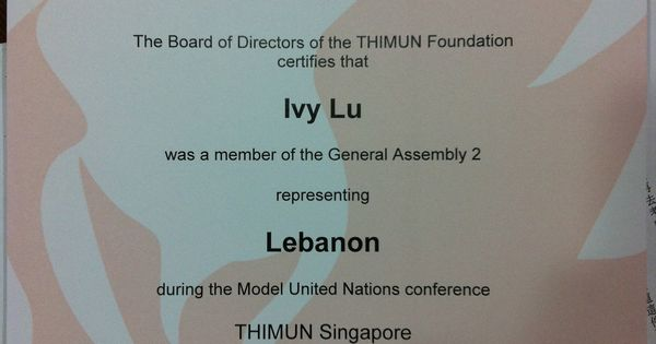 How to Model UN Research  GA First Committee     DISEC   Best Delegate IMAGE