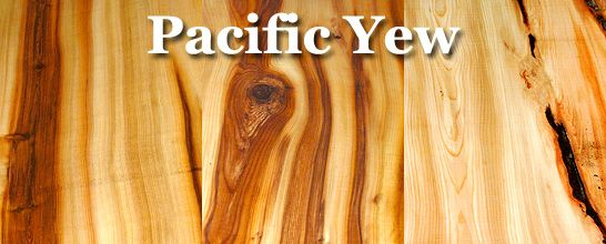 Pacific Yew Lumber Yew Wood Wood Lumber Outdoor Wood