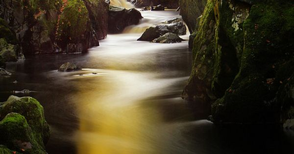Fairy Glen, Betws-y-coed, Wales. One of my all time Favorite places.