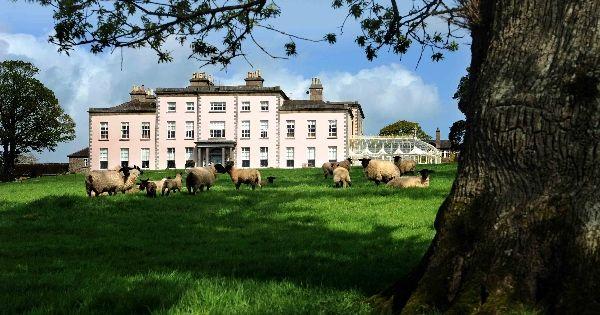 Longueville house - cork shannon ireland