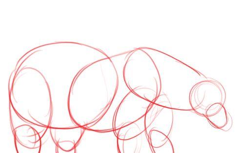 Dessiner un ours polaire - Comment dessiner un ours ...