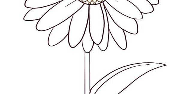 Daisy Flower Coloring Pages Picture 4