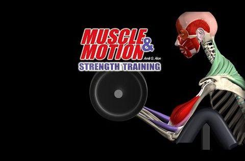 Anatomia De Entrenamiento De La Fuerza 3d Musculoesqueletico