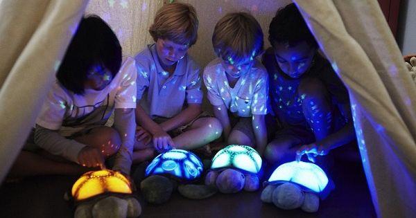 Donkere Slaapkamer Baby : ... Deze schildpad vormt een donkere kamer ...