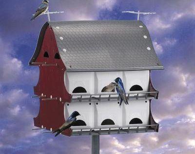 How To Attract Purple Martins Purple Martin House Bird Houses Beautiful Bugs