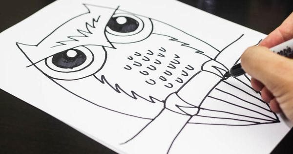 how to draw an owl funny