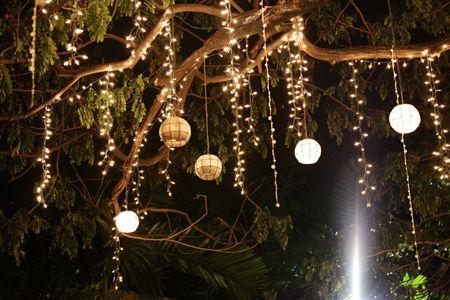 Capiz Lanterns Hanging On The Tree Decorating With Christmas