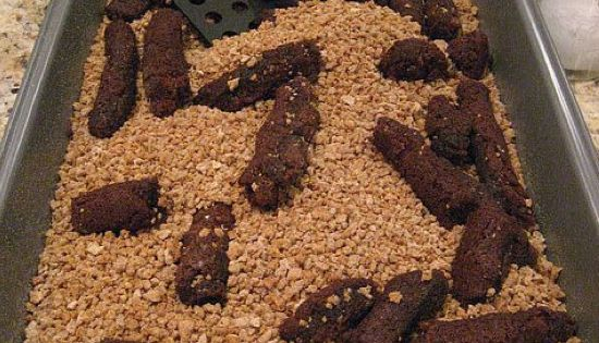 gross halloween food ideas ~ kitty litter cake. Not sure I could