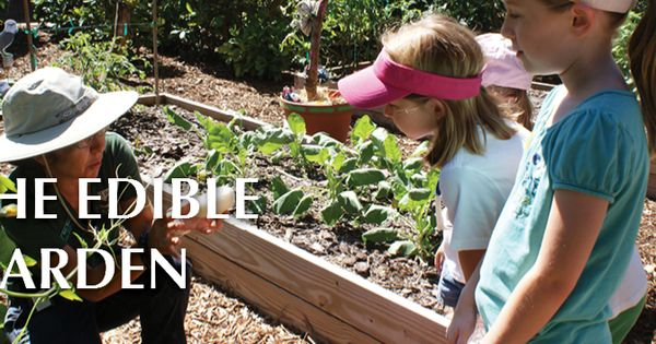 The Edible Garden Fairchild Tropical Botanical Garden 33156 In 2020 Edible Garden Fairchild Tropical Botanic Garden Botanical Gardens