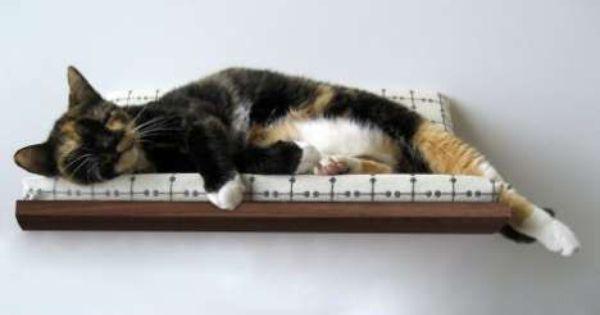 13 Clever Pet Cradles Katte