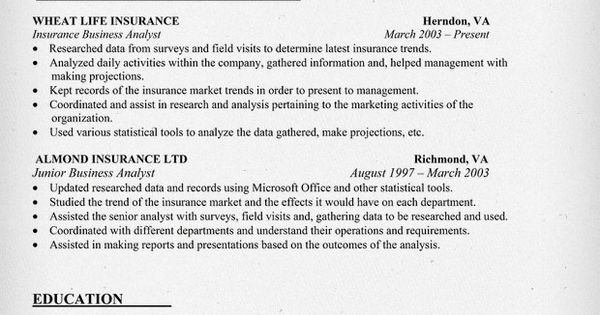 insurance business analyst resume sample resume samples