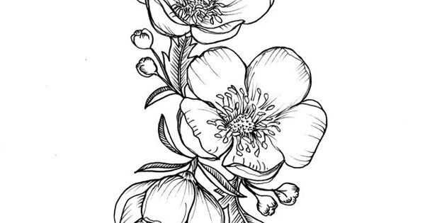 Custom Buttercup Illustration Tattoo