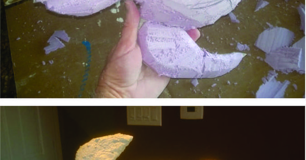 How to make an easy sea turtle outdoor paper mache bird for How to make paper mache waterproof