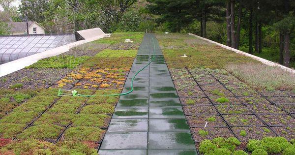 Green Roof Technology Green Roof Technology