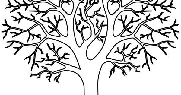 un arbre sans feuilles colorier coloriage pinterest arbre sans feuille colorier et. Black Bedroom Furniture Sets. Home Design Ideas