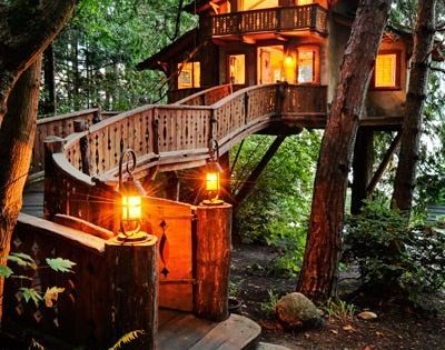 Inhabited Tree House, Seattle Washington--THIS is my dream home! Always wanted a